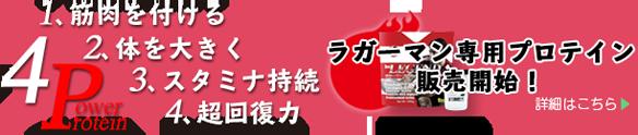 ragby-protein-koushiki